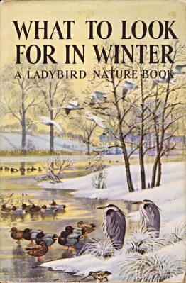 what-to-look-for-in-winter-vintage-ladybird-book-nature-536-first-edition-dust-jacket-1959-705-p